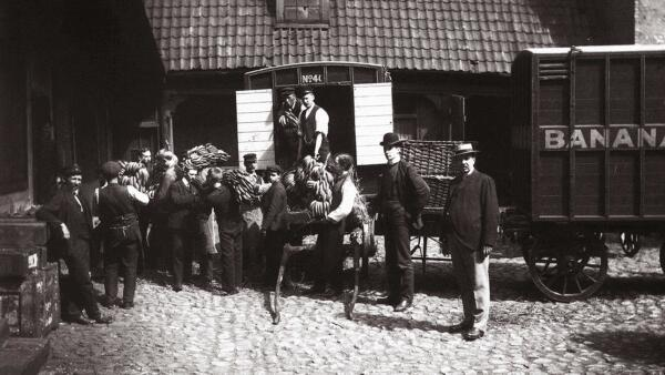 The first bananas arrived in Norway,1905